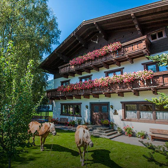 Gemütliche Ferienwohnungen in Flachau-Reitdorf