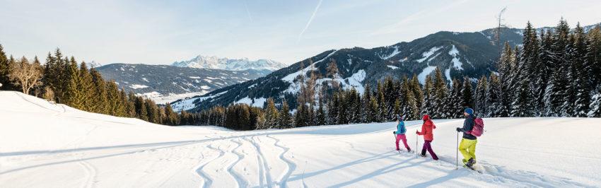 Skischule Hermann Maier // Flachau // Skifahren lernen
